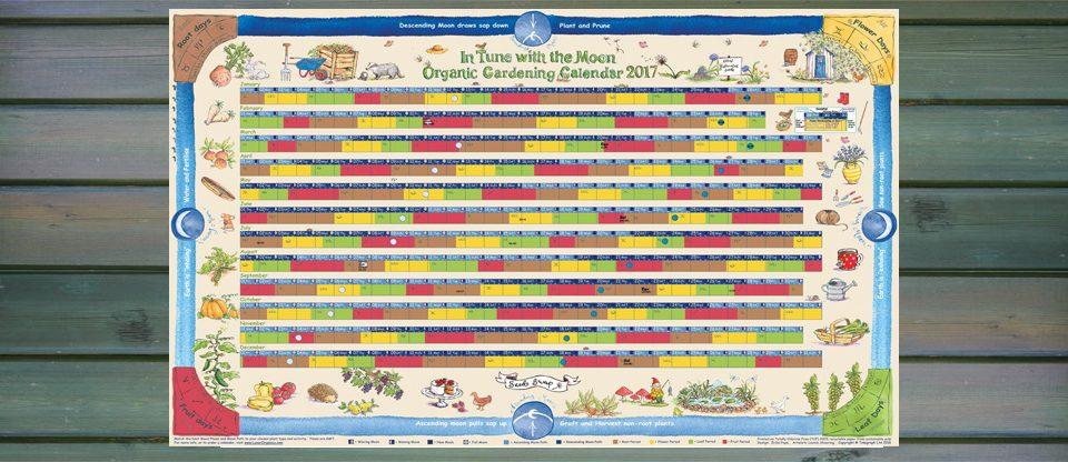 Planting Almanac 2014 1000 Aquarium Ideas